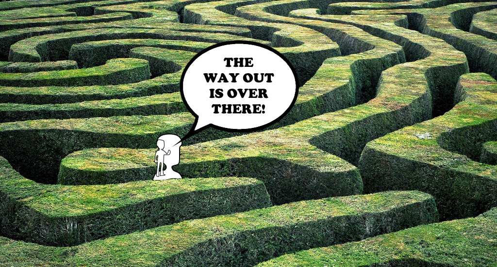 Looking for the way out of a maze