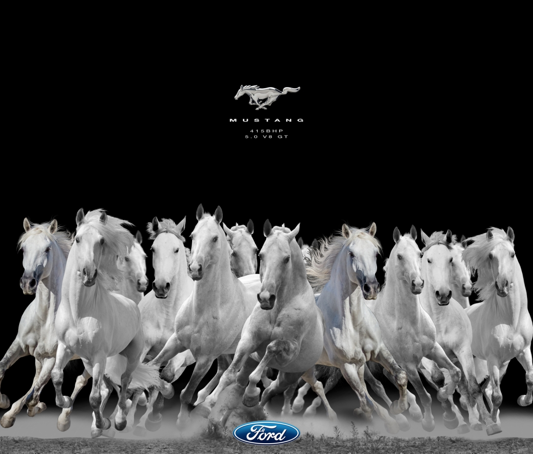 Ad idea for ford mustangs - brake horse power