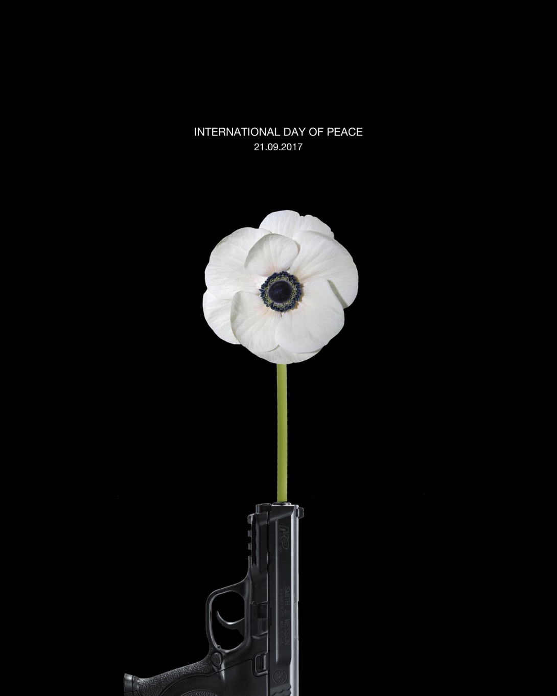 a poster idea for international day of peace - a gun used as a vase for a poppy