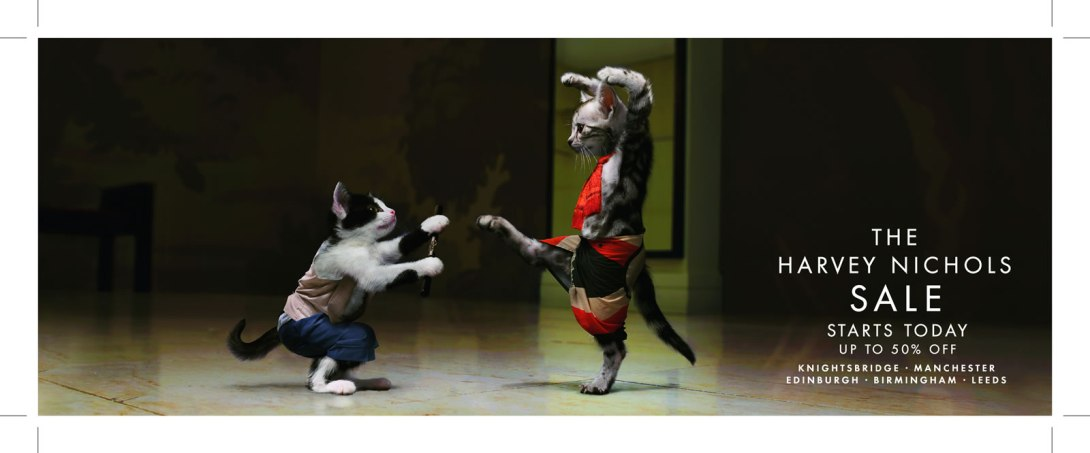 08_04748_003_100x268_Karate_Cat_Fight_P1_hi_res