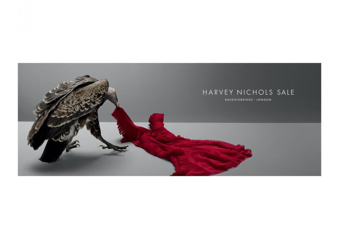 harvey-nichols-summer-sale-vultures-jacket-vulture-dress-vulture-shoes-print-231874-adeevee