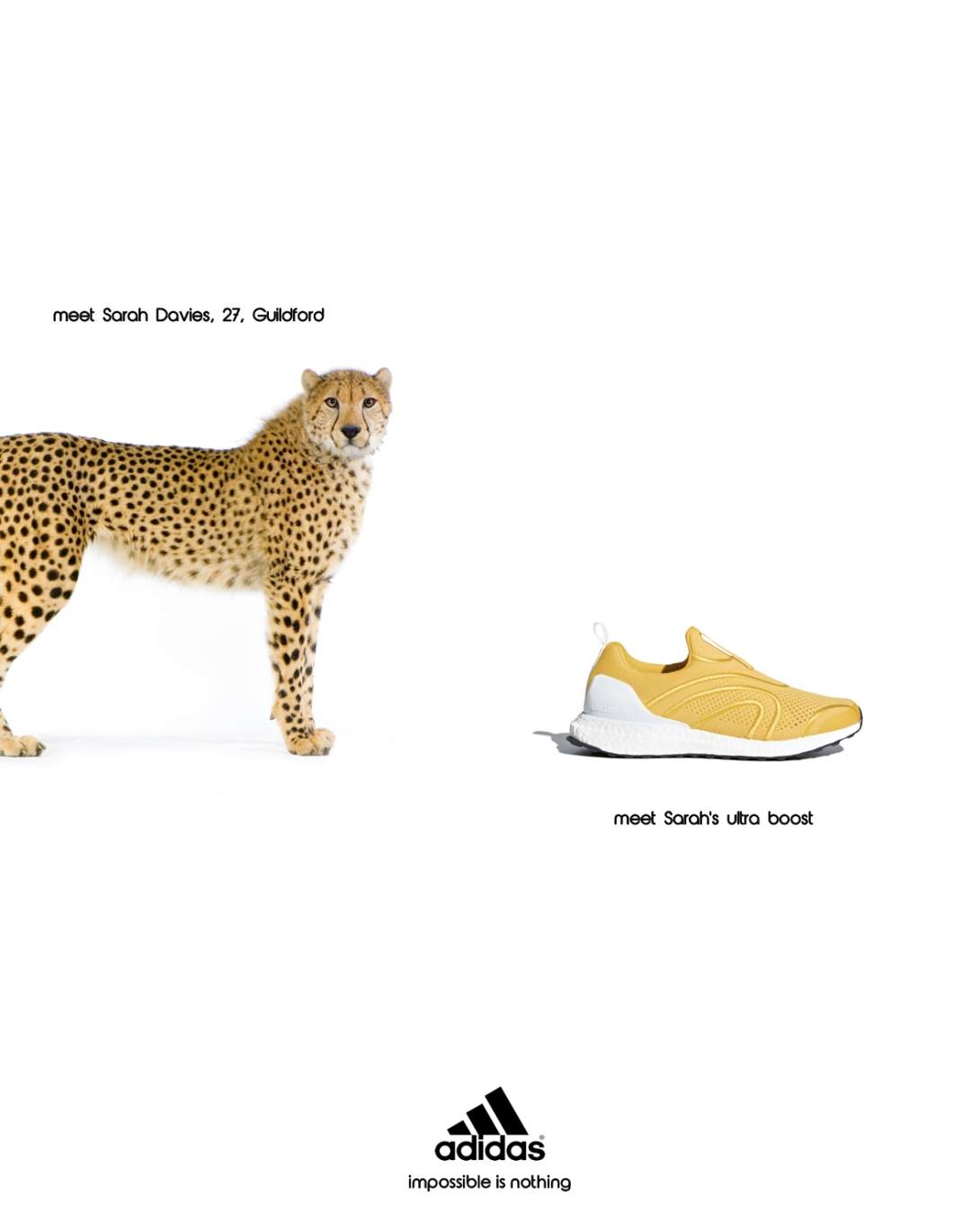advertising concept for a running shoe brand - sarah davies, cheetah