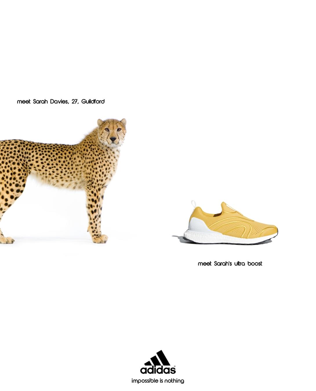 advertising concept for a running shoe brand - sarah davies, cheetah